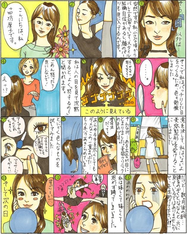 """Chapter""""13"""" 部分切開法二重術"""