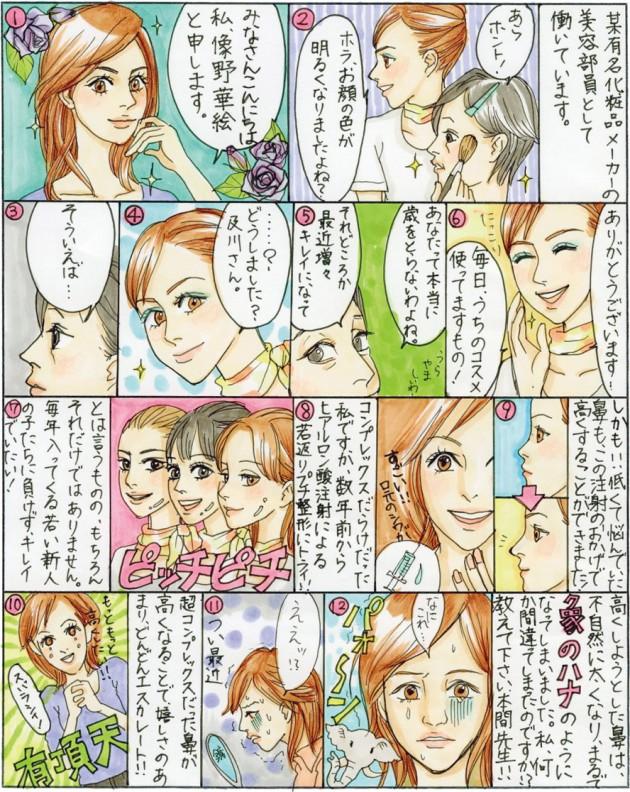 "Chapter""29"" 「隆鼻術」鼻プロテーゼとヒアルロン酸注入"